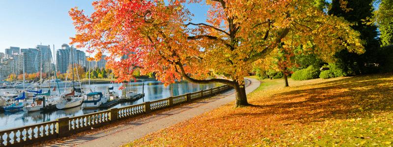 Stanley Park a tourist hotspot in Vancouver