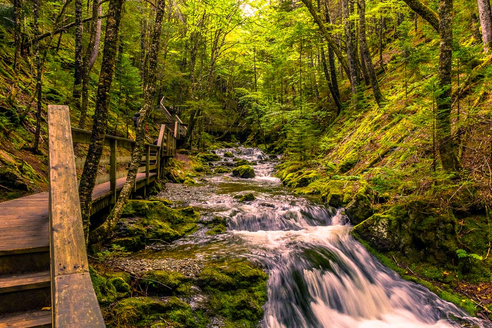 Dickson falls in Fundy National Park New Brunswick