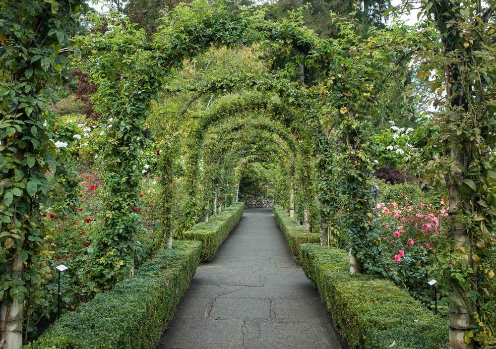 Butchart Gardens in Victoria BC