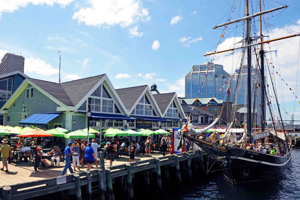 1000s of people visit the Halifax Harbor to take place in the Tall Ships event