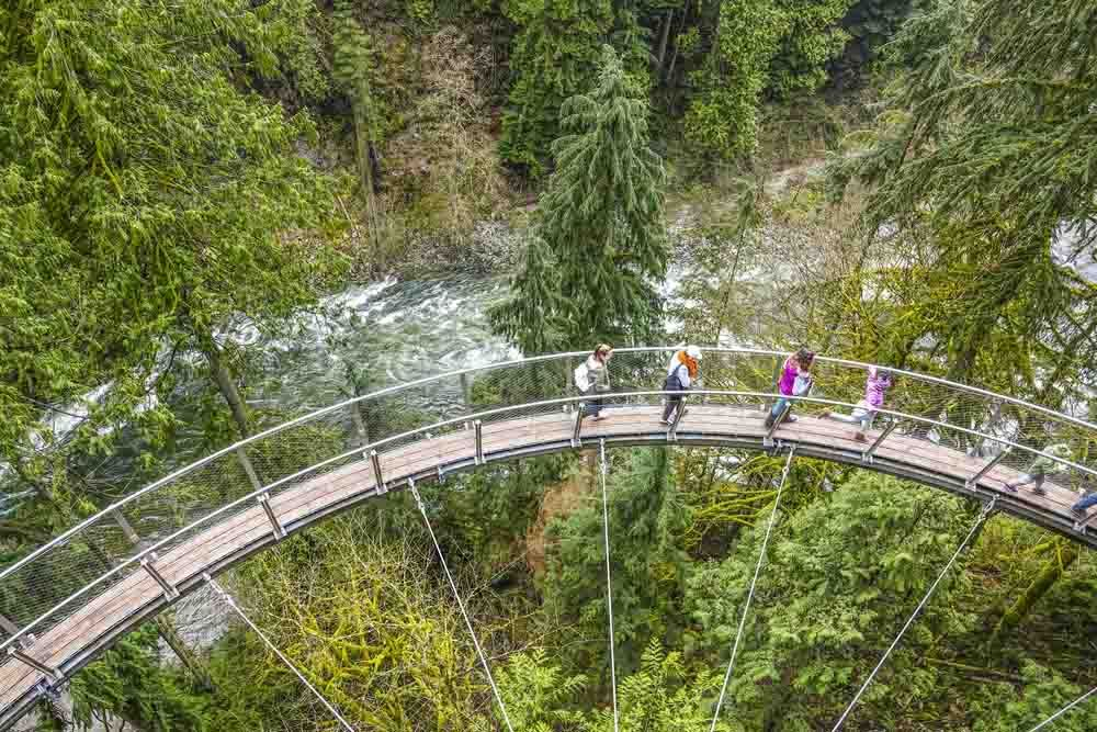 group of adventurers enjoying views from the capilano suspension bridge