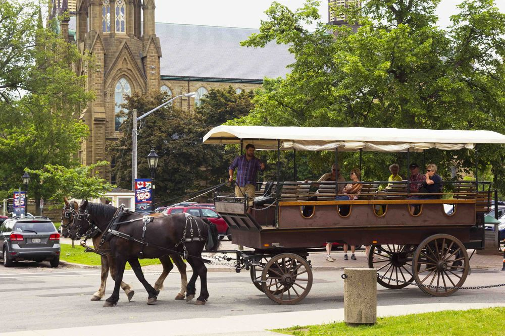 Toursits on 2 horse carriage tour Charlottetown