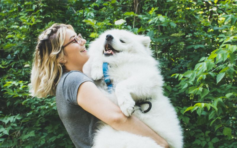 Moving to Canada with your pet? Find out what your fur-child needs for the new, exciting journey ahead!