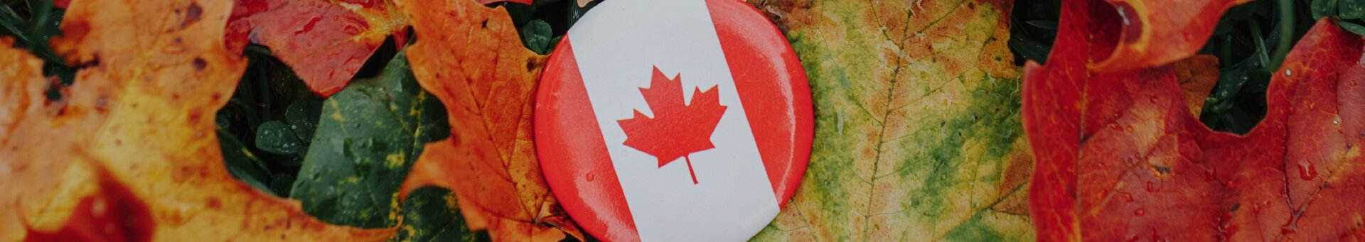 VIDEO: Learn more about Canadian citizenship; how to apply, the benefits, and much more!