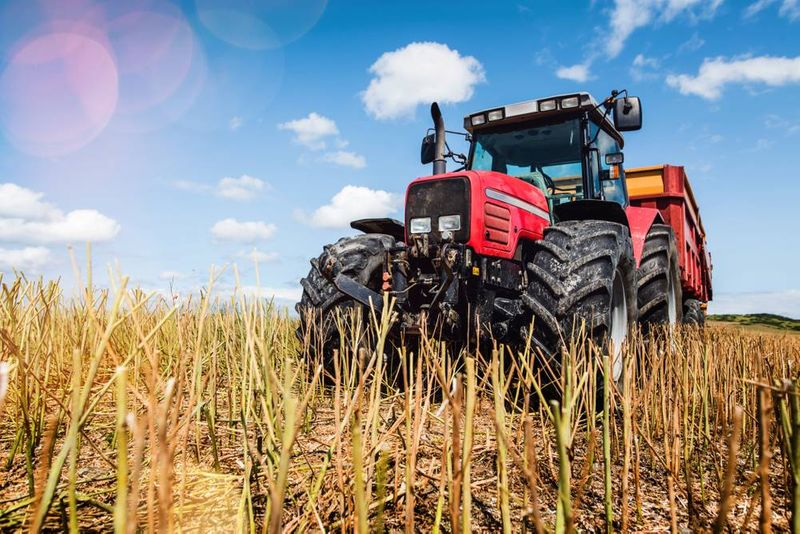 Get permanent residency in Canada through the new Agri-food Pilot