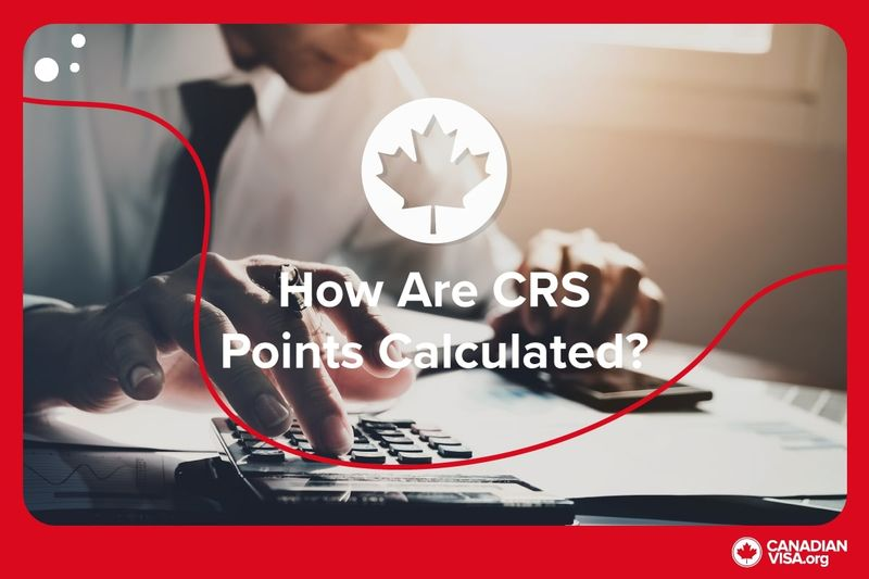 man working with calculator | Improve Your CRS Score