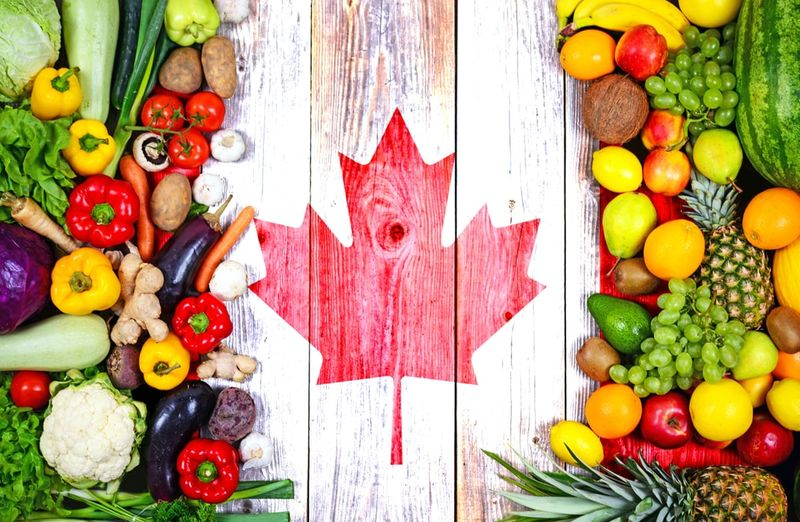 The new Agri-food Pilot Canadian immigration program will allow temporary foreign workers to become permanent residents of Canada. Find out more here!