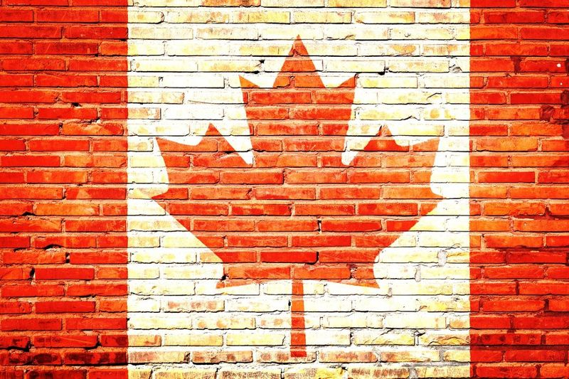 Canada is increasing it's immigration targets every year, and some Canadian immigration programs in 2020 will give you a better chance at successfully immigrating than others.