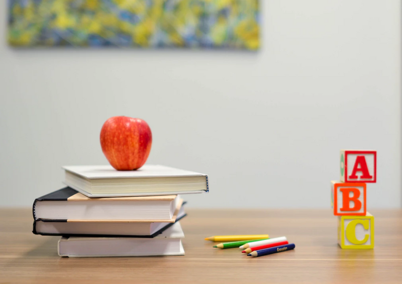 Find out how to immigrate to Canada as an Early Childhood Educator through various different immigration programs for skilled workers in education.