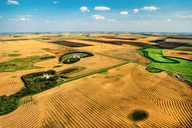 SINP processing steps and what you need to know about your application to Saskatchewan. Discover how to apply for PR under the SINP with this easy guide.