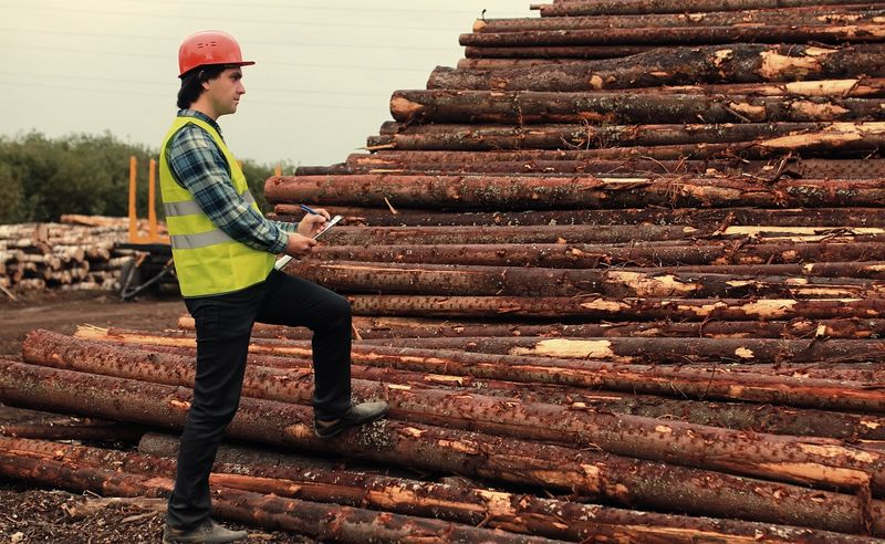 Top Forestry Jobs in Canada-Supervisor