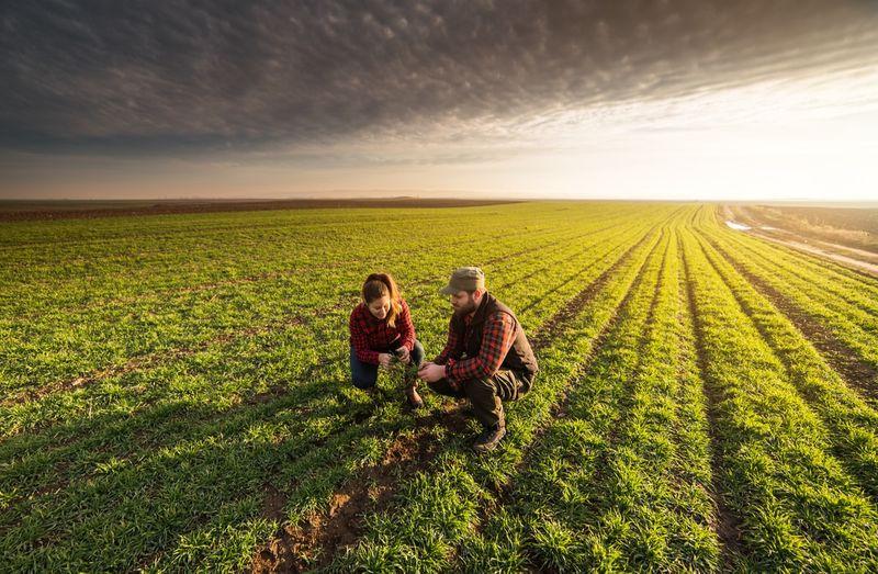 farmers standing in winter crops