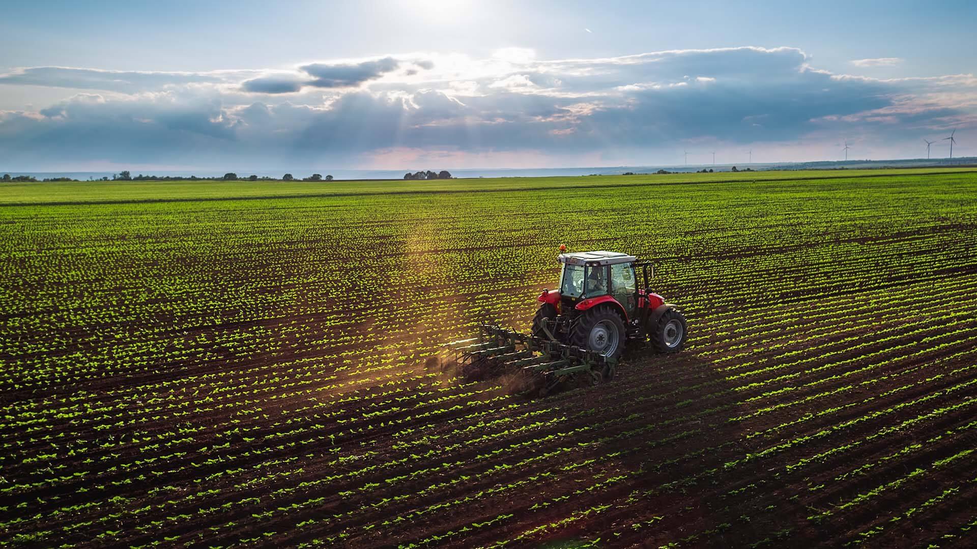 البرنامج التجريبي للهجرة الزراعية الغدائية
