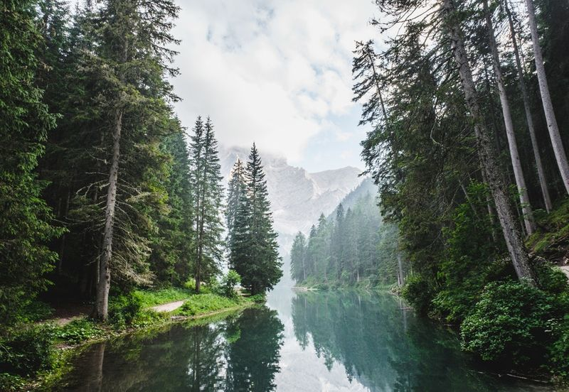 Travel to Canada and explore these 5 wonders that make the country truly unique. Lakes, forests and parks should all be at the top of your next visit.