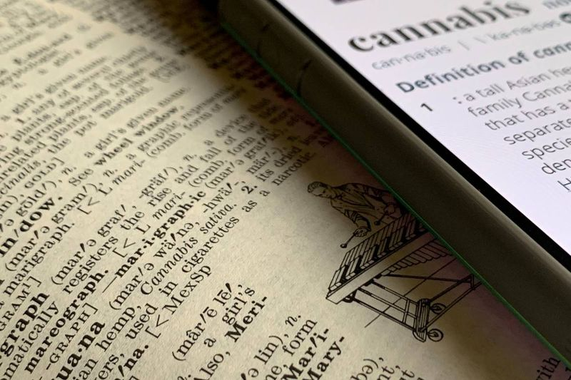 cannabis marijuana definition in dictionary and on cellphone | jobs in Canada