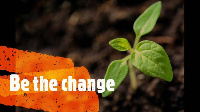be the change green sprout in soil | work in Canada | working holiday