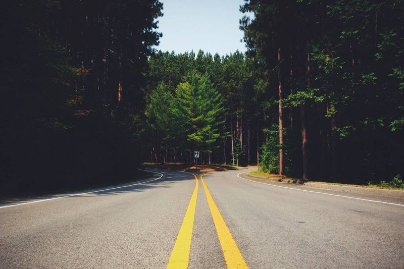 fork in the road through forest   Canadian permanent residency