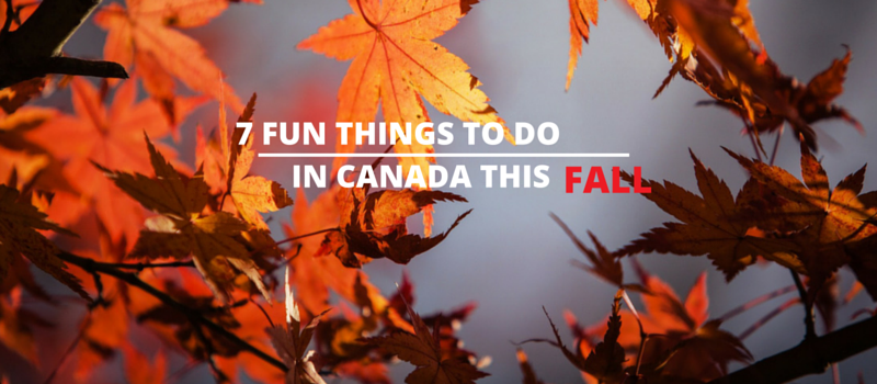 If you live in Canada, here are 7 fun things you can do right before winter time. Canada is known for beautiful landscapes and friendly people. Find out how to make the most of your last few summer days with our fun slideshow.