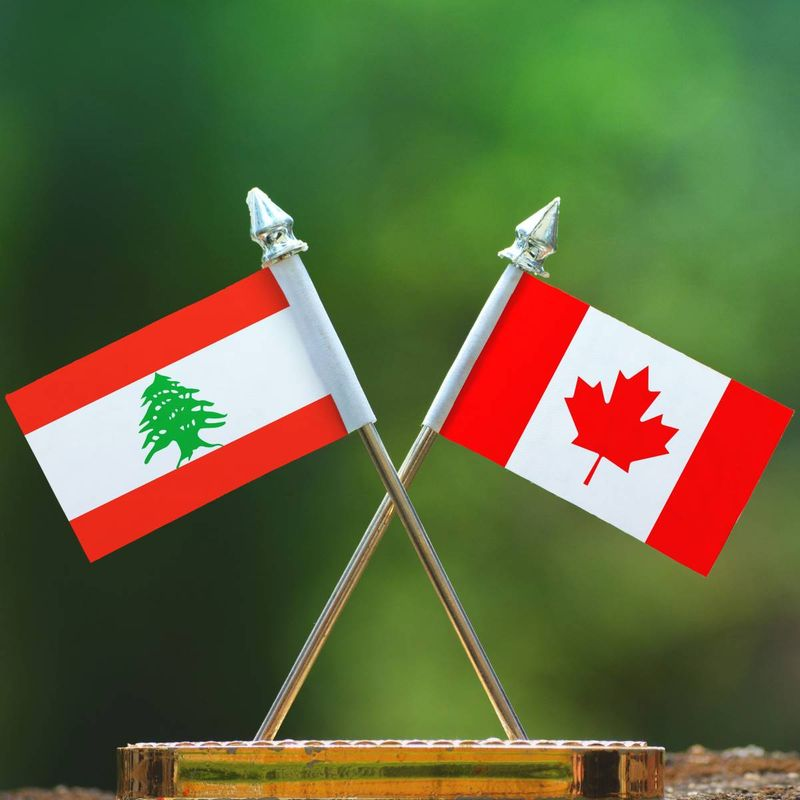 Immigrate to Canada and get free universal healthcare when you immigrate from Lebanon. Keep reading to find out more about how we can help you with the Canadian visa application process.