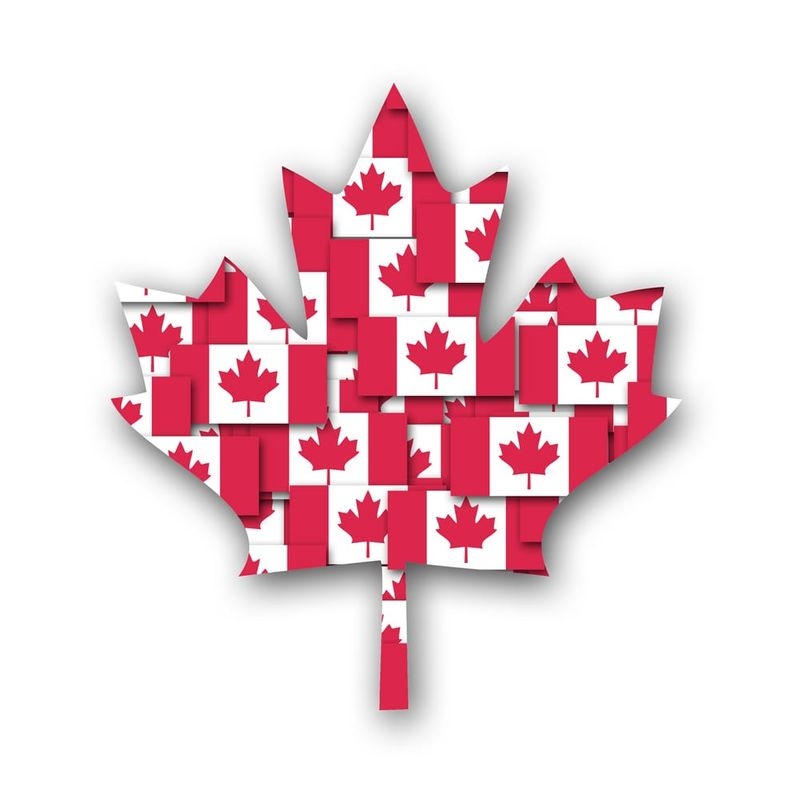 The Canadian Visa Application process can get tricky, especially when deciding between the Express Entry System and The Provincial Nomination Program (PNP).