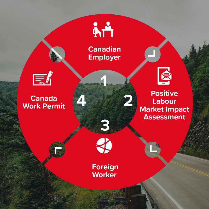 how_to_get_a_labour_market_impact_assessment_infographic