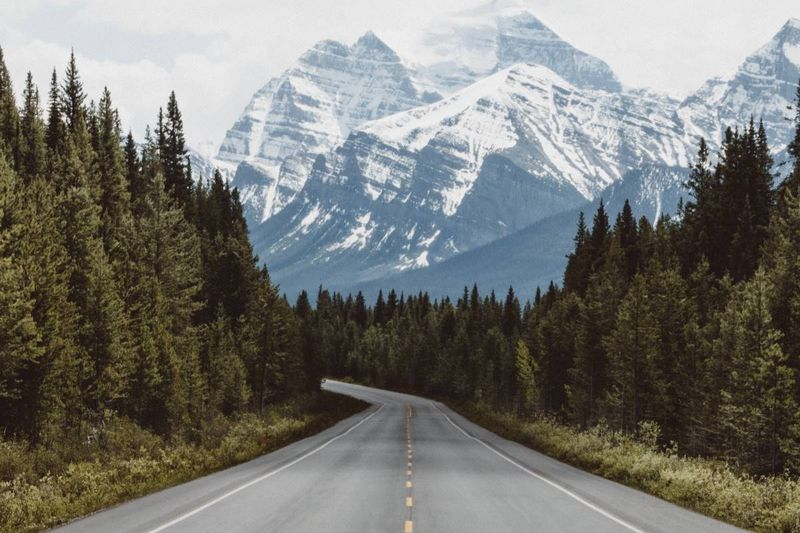 road leading to Canadian Rockies mountains | immigrate to Canada