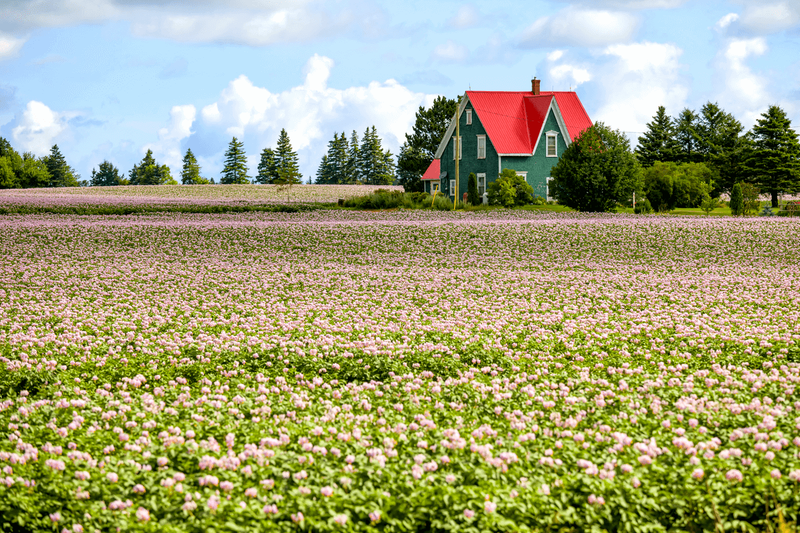 The new Rural and Northern Immigration Pilot is for skilled workers who want to move to Canada permanently. Get details about it here!