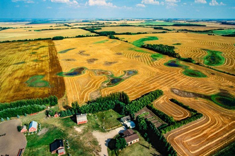 saskatchewan farmlands