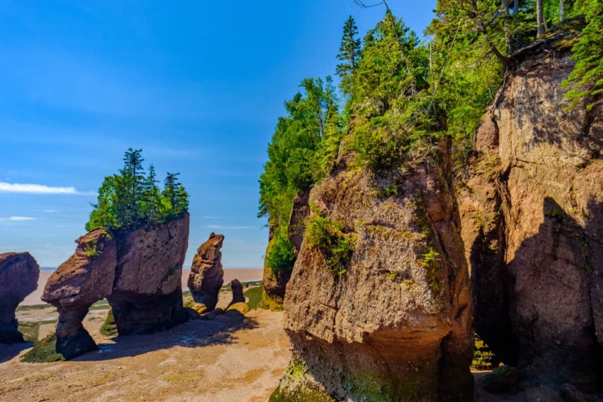 The Bay of Fundy is one